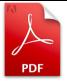 pdf-ico-big